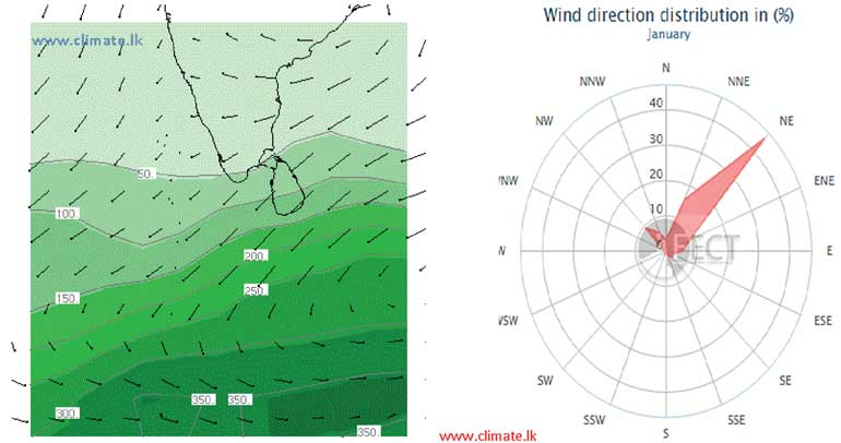 wind-direction-distribution